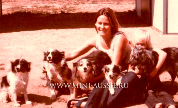 Sandy Travis with her mini aussies
